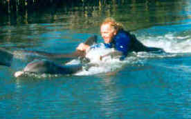 Dolphin assisted therapy for spinal cord injury (SCI) and physical disability